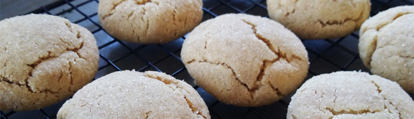 the-best-soft-chewy-ginger-cookies-header
